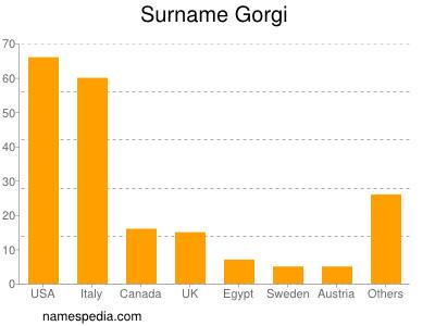 Surname Gorgi