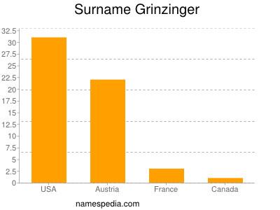 Surname Grinzinger