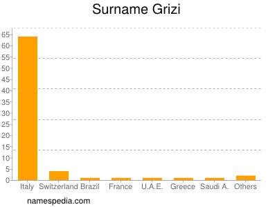 Surname Grizi