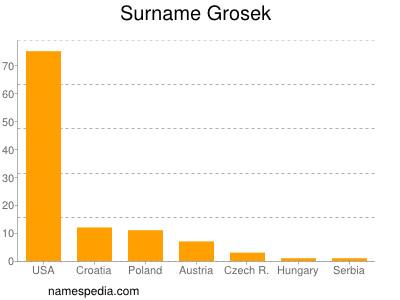 Surname Grosek