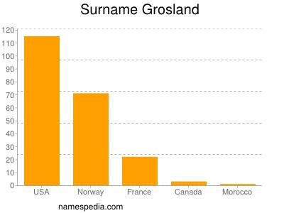 Surname Grosland