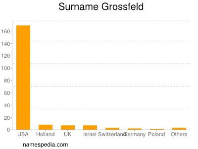 Surname Grossfeld