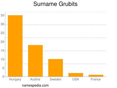 Surname Grubits