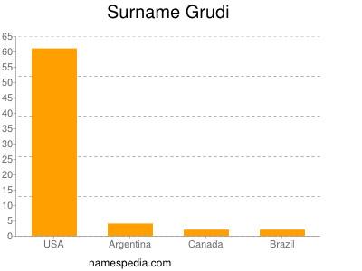 Surname Grudi