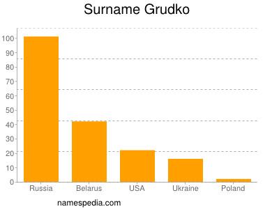 Surname Grudko