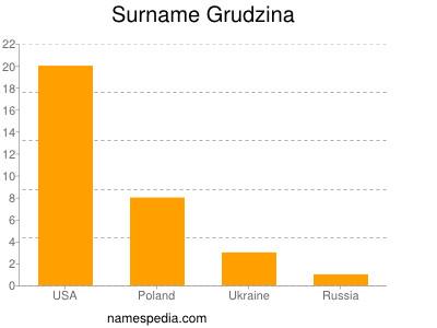 Surname Grudzina