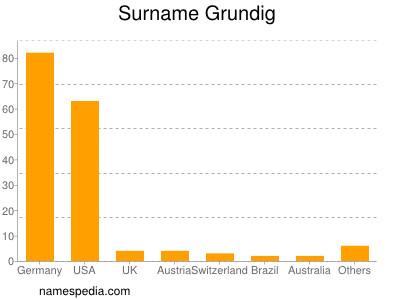 Surname Grundig