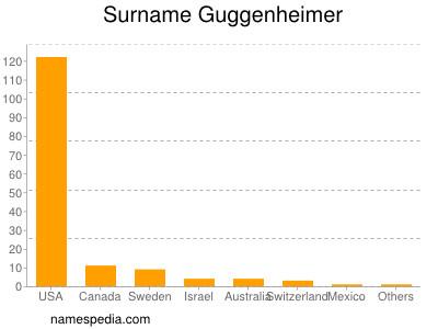 Surname Guggenheimer