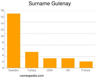 Surname Gulenay