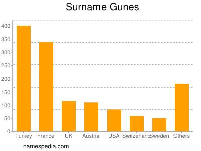 Surname Gunes