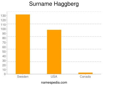 Surname Haggberg