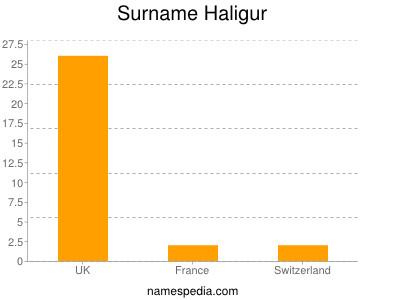 Surname Haligur