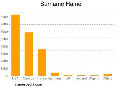 Surname Hamel