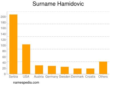Surname Hamidovic