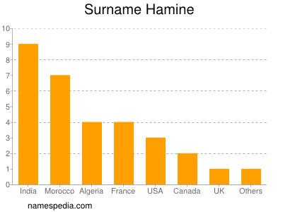 Surname Hamine