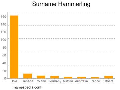 Surname Hammerling