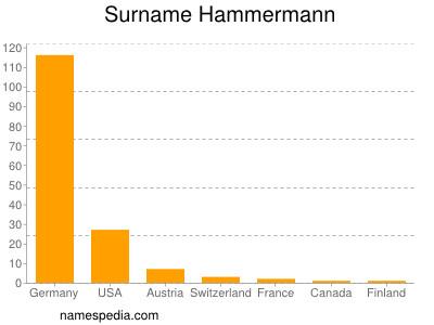 Surname Hammermann