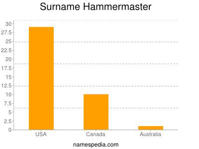 Surname Hammermaster