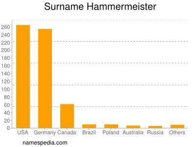 Surname Hammermeister