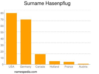 Surname Hasenpflug