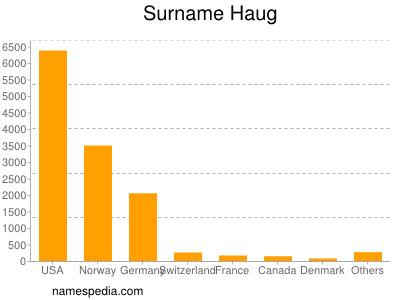 Surname Haug