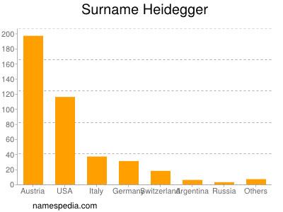 Surname Heidegger