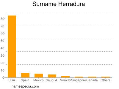 Surname Herradura