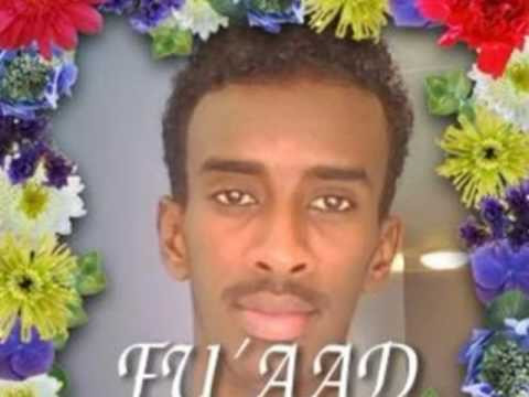 Hibaaq_5