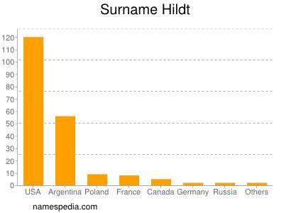 Surname Hildt