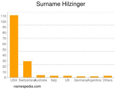 Surname Hilzinger