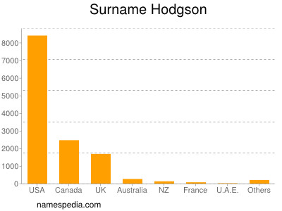 Surname Hodgson