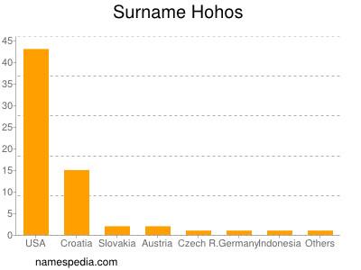 Surname Hohos