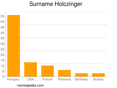 Surname Holczinger