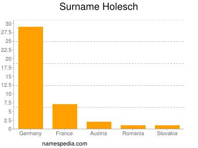 Surname Holesch