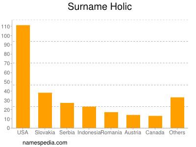 Surname Holic