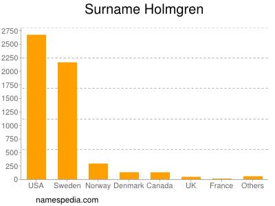 Surname Holmgren
