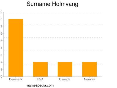 Familiennamen Holmvang