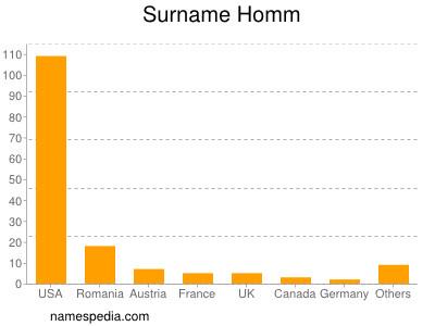 Surname Homm