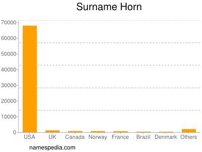 Surname Horn