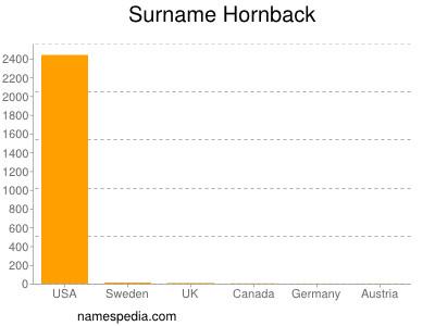 Familiennamen Hornback