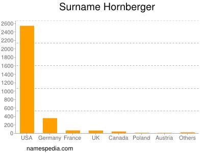 Surname Hornberger
