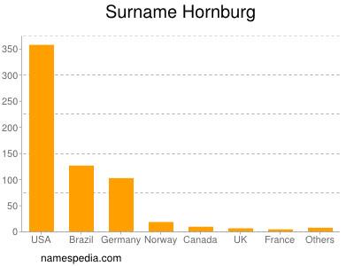 Surname Hornburg