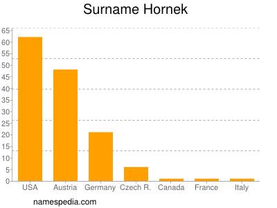 Surname Hornek