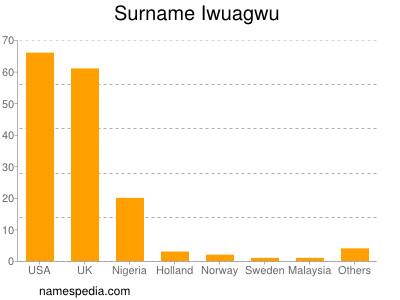 Surname Iwuagwu