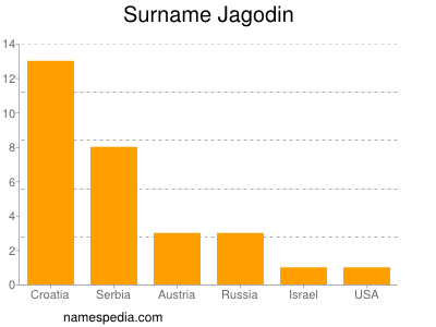 Surname Jagodin