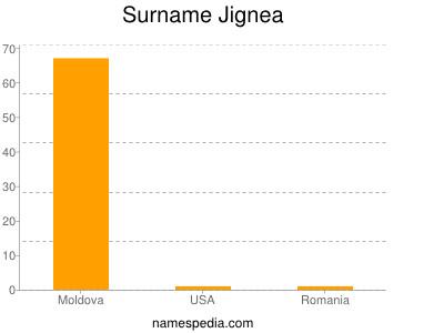 Surname Jignea
