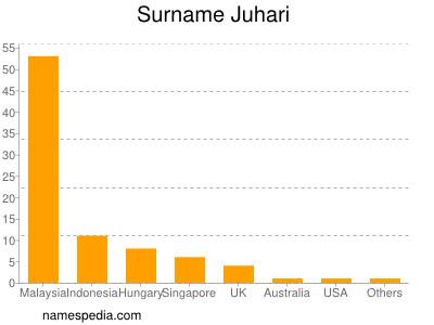 Surname Juhari