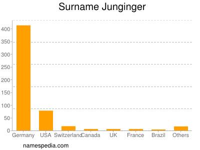 Surname Junginger