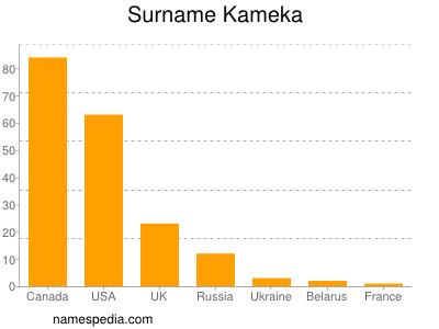 Surname Kameka