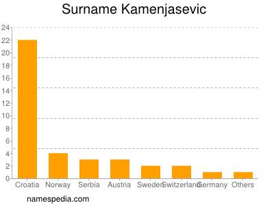 Surname Kamenjasevic